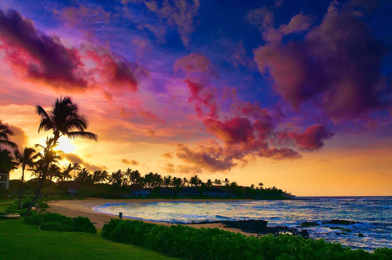 Aloha Immigration Law Firm Honolulu Hawaii Clare Hanusz Attorney